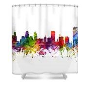 Buffalo Cityscape 06 Shower Curtain