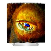 Buffalo Eye Shower Curtain