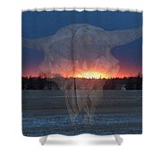 Buffalo Ghosts Shower Curtain