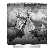 Buffalo Herd Among Teepees Of The Blackfoot Tribe Shower Curtain