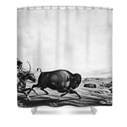 Buffalo Hunt, C1830 Shower Curtain