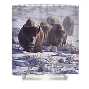 Buffalo In The Fog-signed-##6995 Shower Curtain