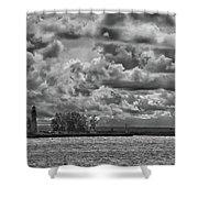 Buffalo Lighthouse 8111 Shower Curtain