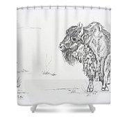 Buffalo Mom And Calves Shower Curtain