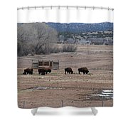 Buffalo New Mexico Shower Curtain