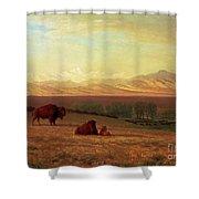Buffalo On The Plains Shower Curtain