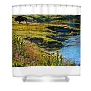Buffalo River Bank Shower Curtain