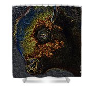 Buffalo Vision Shower Curtain
