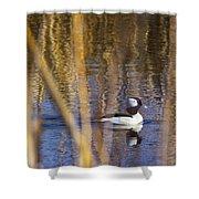 Bufflehead Shower Curtain