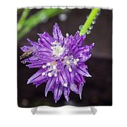 Bug Chilling Chive Shower Curtain
