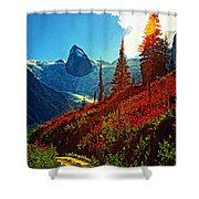 Bugaboos Evening Buzz Shower Curtain