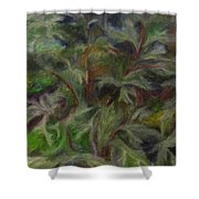 Bugbane Shower Curtain