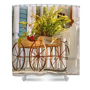 Buggy Planter Shower Curtain