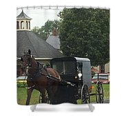 Buggy Travels By Shower Curtain