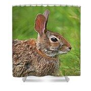 Bugs Bunny.. Shower Curtain