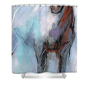 Building Character  Shower Curtain