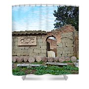 Building Of Ancient Rom Shower Curtain