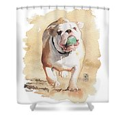 Bull And Ball Shower Curtain