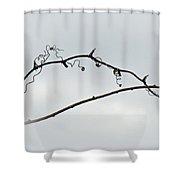 Bull Brier Tendrils Shower Curtain