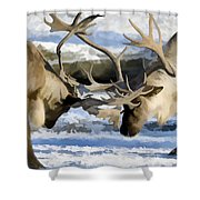 Bull Elk Fighting  Shower Curtain