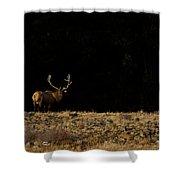 Bull Elk-signed-#0266 Shower Curtain