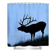 Bull Elk Silhouette Shower Curtain by Larry Ricker
