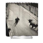 Bull Run 2 Shower Curtain