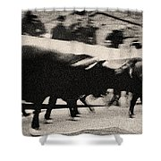 Bull Run 3 Shower Curtain