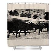 Bull Run 3 Shower Curtain