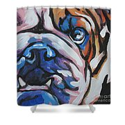 Bulldog Baby Shower Curtain
