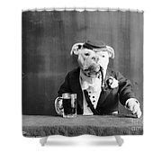 Bulldog, C1905 Shower Curtain