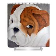 Bulldog Puppy Shower Curtain