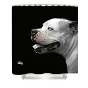 Bulldog Sando  Portrait  Shower Curtain