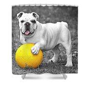 Bulldog Soccer Shower Curtain