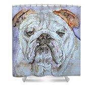 Bulldog - Watercolor Portrait.5 Shower Curtain
