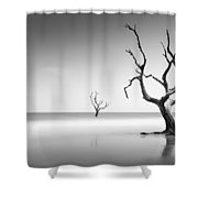 Boneyard Beach Iv Shower Curtain