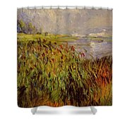 Bulrushes On The Banks Of The Seine 1874 Shower Curtain