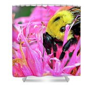 Bumble Bee And Flower Shower Curtain