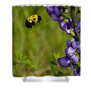 Bumble Bee And Milk-vetch Shower Curtain