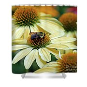 Bumble Bee At Work Shower Curtain