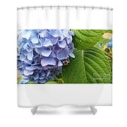 Bumble Bee Blues Shower Curtain