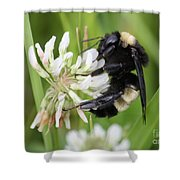 Bumble Bee By The Pond Shower Curtain