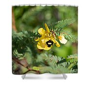 Bumblebee Deep Into Work Shower Curtain