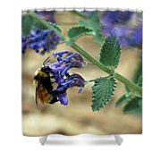 Bumble Bee Delight Shower Curtain
