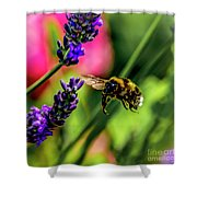 Bumble Bee In Flight Shower Curtain