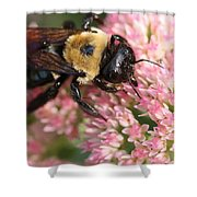 Bumble Bee Macro Shower Curtain