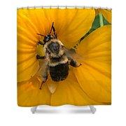 Bumble Bee On Yellow Nasturtium Shower Curtain