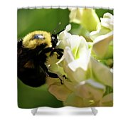 Bumble Bee Shower Curtain by Valeria Donaldson