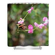 Bumble Bee1 Shower Curtain