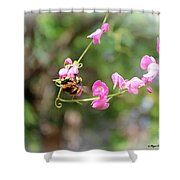 Bumble Bee2 Shower Curtain